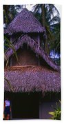 Three Story Hut 2 In Color Beach Towel