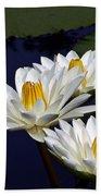 Three White Tropical Water Lilies Version 2 Beach Towel