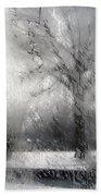 Through Glass -- A Tree In Winter Beach Towel