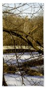 Through The Branches 2 - Central Park - Nyc Beach Towel