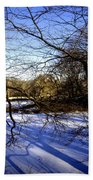 Through The Branches 4 - Central Park - Nyc Beach Towel