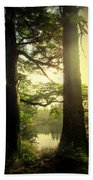 Through The Forest To The Lake Beach Towel