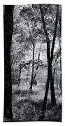 Through The Trees In Black And White Beach Towel