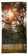 Through The Trees Beach Towel