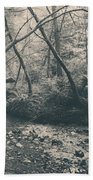 Through The Woods Beach Towel by Laurie Search