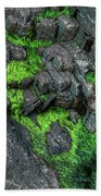 Thunder Hole Algae Beach Towel