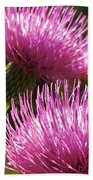 Tickled Thistle Beach Towel