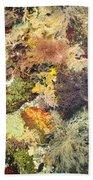 Tidal Pool Color Beach Towel by Debbie Green