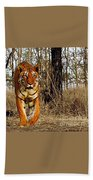 Tiger 1 Beach Towel