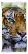 Tiger 26 Beach Towel