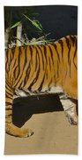 Tiger Beat Beach Towel