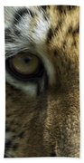Tiger Eyes Beach Towel