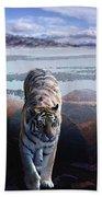 Tiger In A Lake Beach Towel