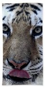 Tiger Lick Beach Sheet