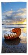 Tiger Nautilus Sunrise Beach Towel