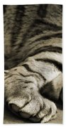 Tiger Paws Beach Towel