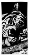 Tiger R And R Black And White Beach Towel
