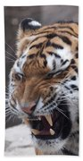 Tiger Smile Beach Towel