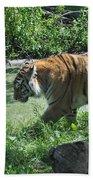 Tiger Stroll Beach Towel