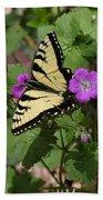 Tiger Swallowtail Butterfly On Geranium Beach Towel