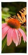 Tiger Swallowtail Feeding Beach Towel