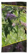 Tiger Swallowtail Oob-featured In Beautycaptured-oof-harmony And Happiness Beach Towel