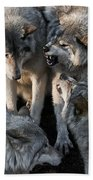 Timber Wolf Pictures 1096 Beach Towel