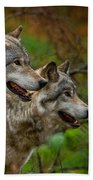 Timber Wolf Pictures 1710 Beach Towel