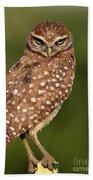 Tiny Burrowing Owl Beach Towel
