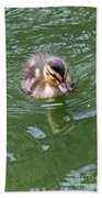 Tiny Duckling Beach Towel