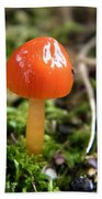 Tiny Orange Mushroom Beach Towel