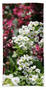 Tiny Pink And Tiny White Flowers Beach Towel