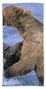Tk0334, Thomas Kitchin Grizzlyalaskan Beach Towel