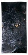 T.kitchin Tk1731e, Gray Wolf, Timber Beach Towel