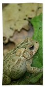 Toad Under Cover  Beach Towel