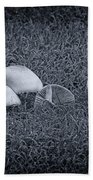Toadstools V6 Beach Towel by Douglas Barnard