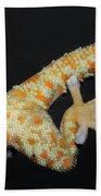 Tokay Gecko Feet Beach Towel