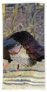 Tom Turkey Walking Beach Towel