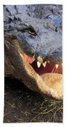 Toothy Grin Beach Towel by Adam Jewell
