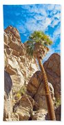 Top Of A Palm Near Top Of Andreas Canyon-ca Beach Towel