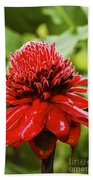 Torch Ginger Single  Beach Towel