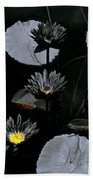 Torchlight Water Flowers Beach Towel