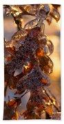 Toronto Ice Storm 2013 - Oak Leaves Jewelry Beach Towel