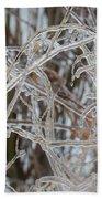 Toronto Ice Storm 2013 - Pale Frozen Grasses  Beach Towel