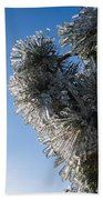 Toronto Ice Storm 2013 - Pine Needle Flowers In The Sky Beach Towel