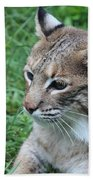 Tough Cat Beach Towel