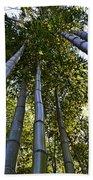 Towering Bamboo Beach Towel