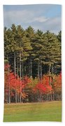 Towering Evergreens Beach Towel