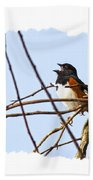 Towhee Singing On Top Of Mountain Beach Towel