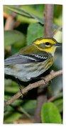 Townsends Warbler In Tree Beach Towel